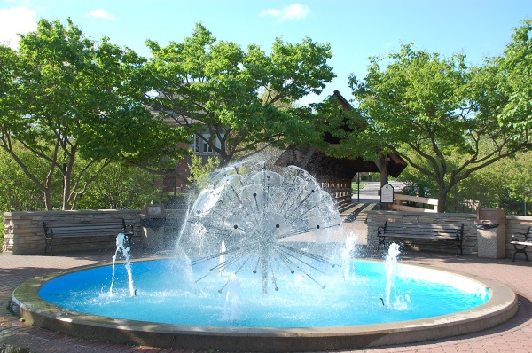 dandelion-fountain-web-DSC_5451